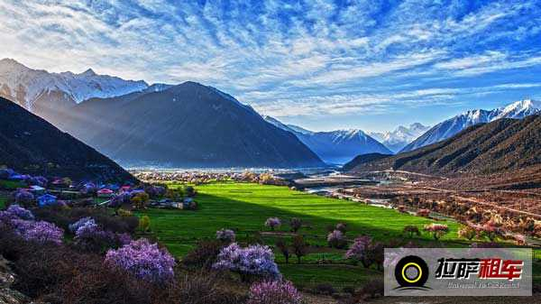 西藏林芝桃花沟